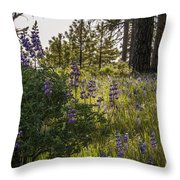 Land Of The Lupines Throw Pillow
