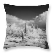 Land Of The River People Throw Pillow