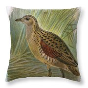 Land Rail Throw Pillow