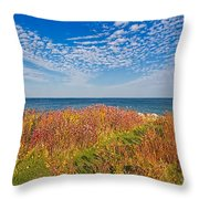 Land Sea Sky Throw Pillow