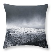 Land Shapes 2 Throw Pillow