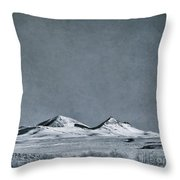Land Shapes 26 Throw Pillow by Priska Wettstein