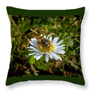 Daisy And Bee Throw Pillow