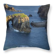 Lands End Morning Throw Pillow