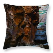 Landscape 1 Throw Pillow