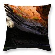 Landscape 18 Throw Pillow