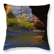 Landscape 319 Throw Pillow