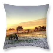 Landscape And Horse Throw Pillow