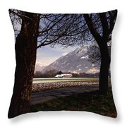 Landscape At Night Throw Pillow
