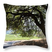 Landscape At The Jack London Ranch In The Sonoma California Wine Country 5d24583 Throw Pillow