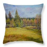 Landscape From Pyhajarvi Throw Pillow