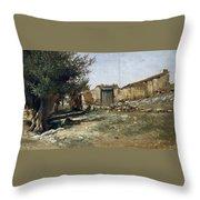 Landscape In Aragon Throw Pillow