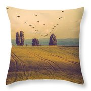 Landscape In France Throw Pillow