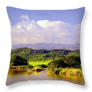Landscape In Puerto Rico. Throw Pillow