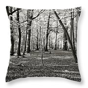 Landscape In The Woods Throw Pillow