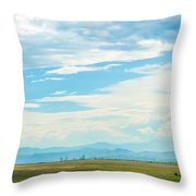 Landscape Of Denver Colorado Throw Pillow