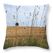 Landscape Of France Throw Pillow