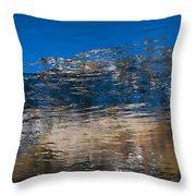 Landscape Water Throw Pillow