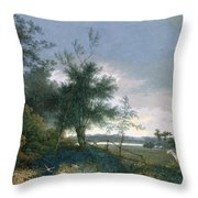 Landscape With A Fox Chasing Geese Throw Pillow