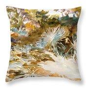 Landscape With Palmettos Throw Pillow