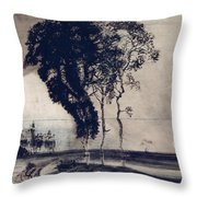 Landscape With Three Trees Throw Pillow by Victor Hugo