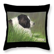 Landseer Newfoundland Dog In Grass Pets Animal Art Throw Pillow