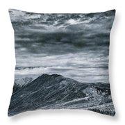 Landshapes 30 Throw Pillow by Priska Wettstein