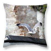 Landskrona Se No 14 Throw Pillow