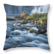 Lanesboro Dam 10 Throw Pillow