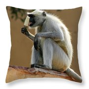 Langur With Kulfi Throw Pillow