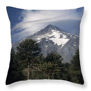 Lanin Volcano And Araucaria Trees Throw Pillow