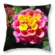Lantana Blooms And Buds Throw Pillow