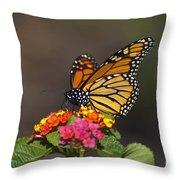Lantana Landing Throw Pillow