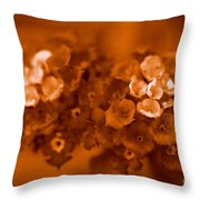 Lantana Sepia Throw Pillow