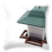 Lantern Bird Feeder Throw Pillow