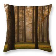 Larch Grove Throw Pillow by Anne Gilbert