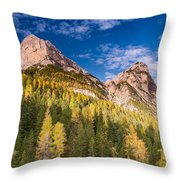 Larch On A Slope Throw Pillow