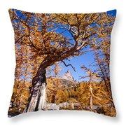 Larch Tree Frames Prusik Peak Throw Pillow