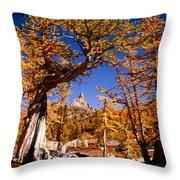 Larches Frame Prusik Peak Throw Pillow