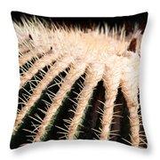 Large Cactus Ball Throw Pillow