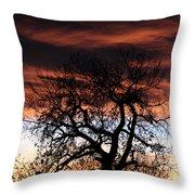 Large Cottonwood At Sunset Throw Pillow