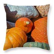 Large Edible Gourds Throw Pillow