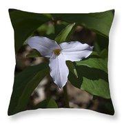 Large-flower Trillium Dspf277 Throw Pillow