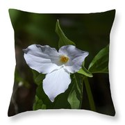 Large-flower Trillium Dspf279 Throw Pillow