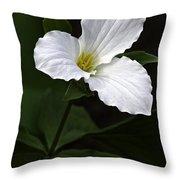 Large Flowered Trillium Throw Pillow