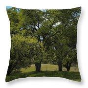 Large Green Oak Trees Throw Pillow