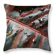 Large Leaf Throw Pillow