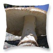 Large Mushroom Throw Pillow