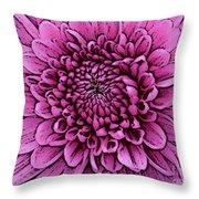 Large Pink Dahlia 2 Throw Pillow
