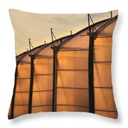 Large Scale Industrial Greenhouse Lit By Sunet Throw Pillow